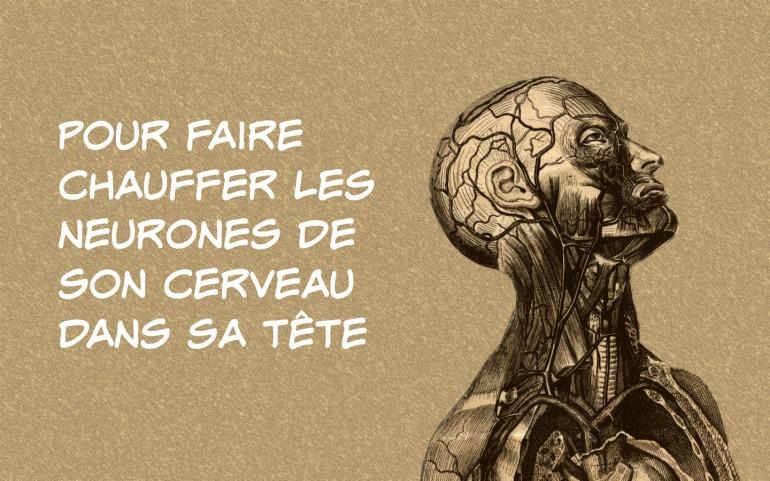 anatomy-of-the-brain-hd-wallpaper