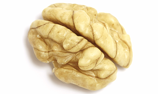walnutbrain